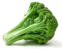 Saláták- gyümölcsök és zöldségek: brokkoli és cikória