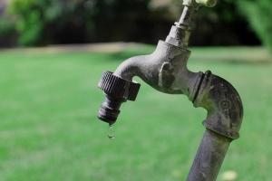 Víz nélkül nincs élet